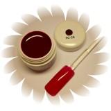Värvigeel - Plum Red